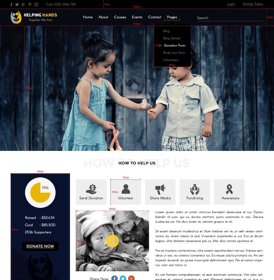 Charity WordPress Themes, Non Profit WordPress Themes | Pro themes